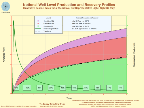 Notional Well Level Production and Recovery Profiles