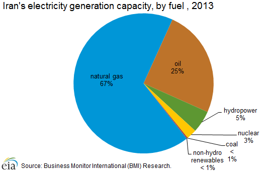 Iran's electricity generation capacity, by fuel, 2013