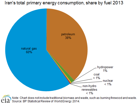 Iran's total primary energy consumption, share by fuel, 2013